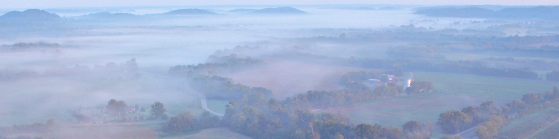 A foggy morning view of patches of farm land separated by trees